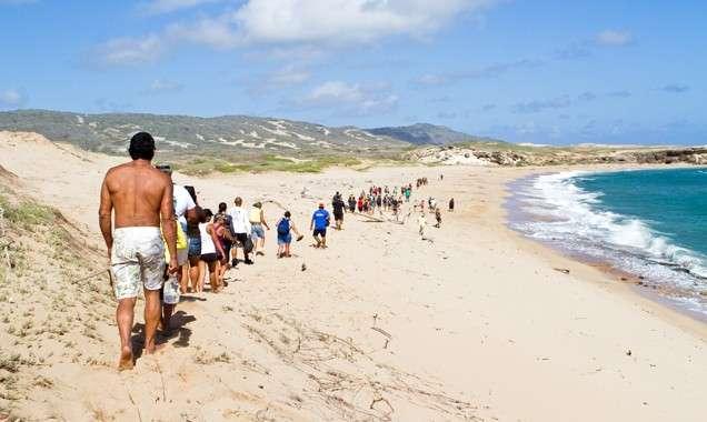 moomomi walk 2013